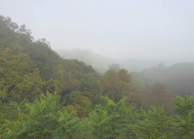 WVA Mountain